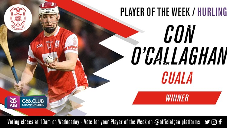 Con O'Callaghan voted GAA.ie Hurler of the Week
