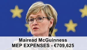 MEP Cash Cow - Irish MEPS claim millions in expenses