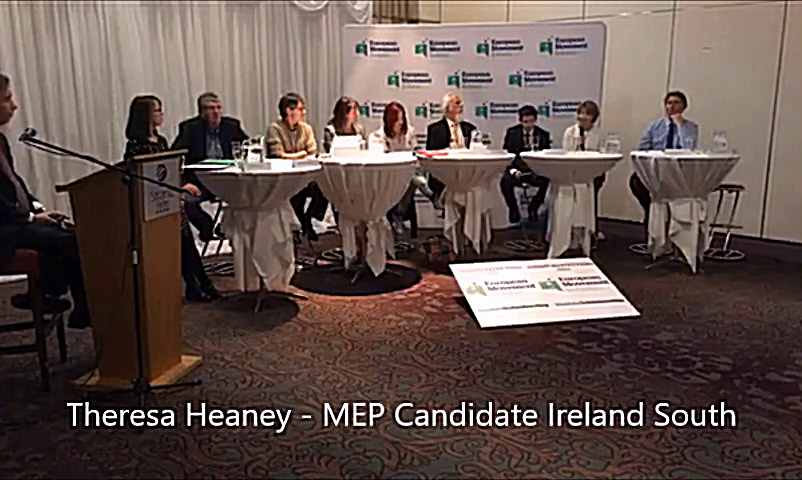 MEP Candidates Ireland South - Theresa Heaney