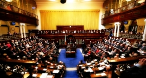 Proposed PBP Birthright Citizenship Bill grave consequences for Ireland