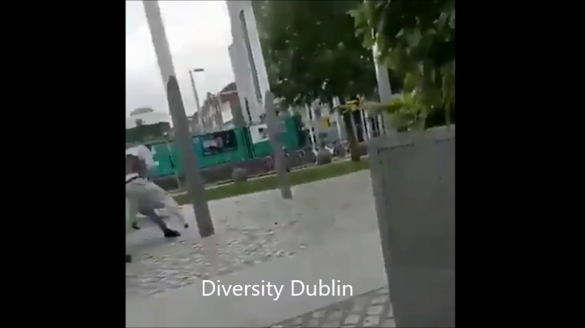 Welcome to Dublin , Diversity in Dublin