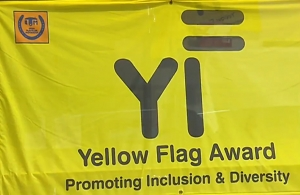 Yellow Flag Programme - Removing Irish Culture from our Schools
