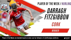 Darragh Fitzgibbon voted GAA.ie Hurler of the Week