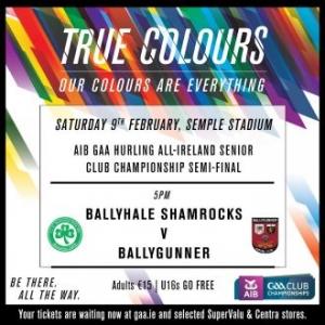 AIB GAA Hurling All-Ireland Senior Club Championship Semi-Final – Ballyhale Shamrocks (Kilkenny) 1-15 Ballygunner (Waterford) 0-13