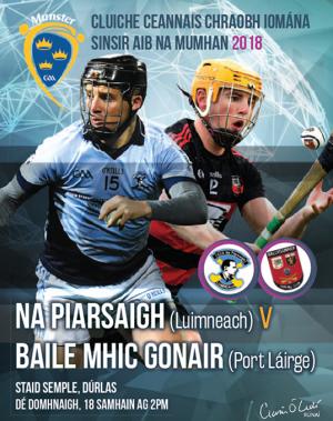 AIB Munster Club SHC Final – Ballygunner 2-14 Na Piarsaigh 2-8